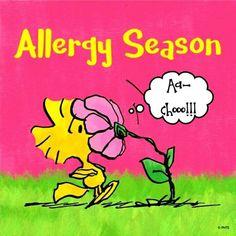 That's me! 'Tis the season to sniffle & sneeze 🤧 😷