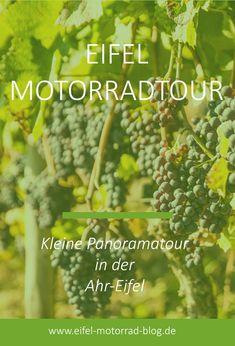 Eifel Motorradtour: Kleine Panoramatour in der Ahr-Eifel Die Eifel, Cafe Racer, Herbs, Camping, Tours, Blog, Autos, Convertible, Vacation