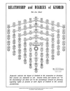 Kinship chart   Genealogy   Pinterest   Genealogy