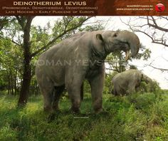 Deinotherium levius by RomanYevseyev Prehistoric World, Prehistoric Creatures, Jurassic Park World, Extinct Animals, Animals Images, Fossils, Mammals, Wildlife, Atoms