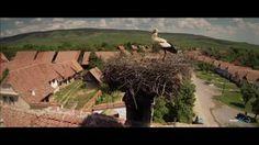 VISCRI, jud.Brasov - UNESCO - aerials