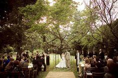 Eucalyptus lane wedding venue - Google Search