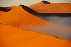 Famous sand dunes of Namib desert, Deserts Of The World, Namib Desert, Sea Level, Death Valley, Rotterdam, Travel, Viajes, Destinations, Traveling