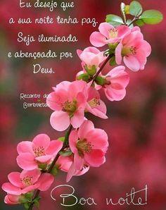 Good Night, Good Morning, Spiritual Messages, Spirituality, Flowers, Quran, Wander, Portugal, Alice