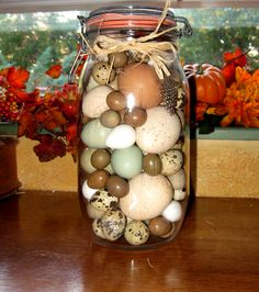Blown  Eggs in antique 1/2 gallon canning jar by Bracken Ridge Ranch: Chicken , Turkey, Bantam Blue Duck, Button Quail, Coturnix Quail, and Bob White Quial eggs. www.brackenridgeranch.com