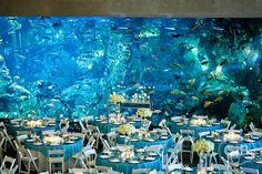 Stunning Aquarium Wedding Reception...look at that backdrop of that beautiful aquarium.