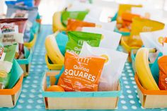 Project Nursery - First Birthday Picnic Lunches