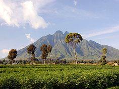http://www.greenfudge.org/wp-content/uploads/2010/04/virunga-national-park.png