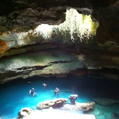 Florida cave diving- blue grotto.. amazing dive