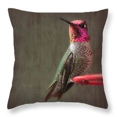 Hummingbird Flare Throw Pillow by Melanie Lankford Photography