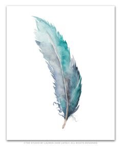 Single Blue Green Feather