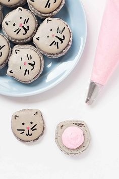 Do It Yourself Creative Desserts - Kitten Macarons Event Planning Guide, Vanilla Macarons, Pink Food Coloring, Macaron Recipe, Macaron Cake, Creative Desserts, Cat Party, Signature Cocktail, Cute Food