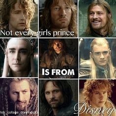 Nope, can't think of a single Disney prince I'd take over a Middle Earth man. Tolkien knew what he was doing. <3 Especially Merry for me :D