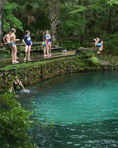 Ocala: Juniper Springs (26701 E Highway 40 Silver Springs, FL 34488)