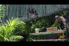 Así trabajamos en Huatan. Aquí puedes ver el montaje de un muro verde en La Popular en la CDMX Aquarium, Popular, Goldfish Bowl, Aquarius, Most Popular, Fish Tank, Folk