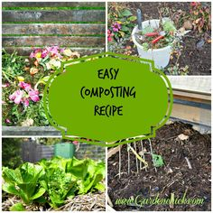 Every year I say the same thing.....I'm going to start a compost bin. Every year I don't. Any gardener who wants to grow organically knows that you have to start with healthy soil. There's no bette...