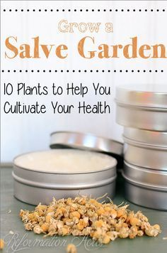 The top 10 healing herbs to grow in your salve garden-- grow these so you are always stock for DIY natural remedies, homemade salves, balms, and more.