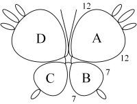 Beginning Butterfly Tatting Pattern