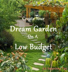 Create Your Dream Garden On A Low Budget With These 12 Surprising Tips