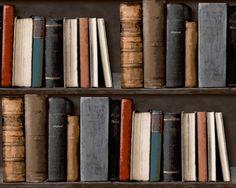 ryanwallcoverings bookshelves library