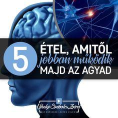 1. MÉHPEMPŐ: tele van acetikolinnal, ami az idegek közötti kommunikációban fontos. 2. GINKGO BILOBA: tágítja az agyban lévő hajszálereket, így jobb lesz a vérkeringés. 3. GRÁNÁTALMA: lassítja a demenciát, segít a gyulladásokat gátolni az idegsejtekben. 4. CHIA MAG: Kitűnő Omega-3 forrás, ami nélkül agyunk nem képes működni. 5. KRILL OLAJ: nem csak Omega-3-at, hanem asztaxantint is tartalmaz, ami áthatol a vér-agy gáton, így hosszútávú védelmet biztosít az agysejteknek. Az egészség legyen… Health, Health Care, Salud