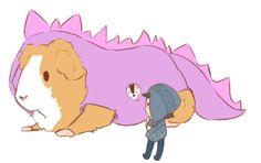 Craig Tucker • péruvien • cochon-d'Inde géant déguisé en dragon!