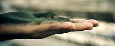 Gyógyulj gombákkal! : Spirulina, egyfajta kék-zöld alga, gazdag fehérjéb...