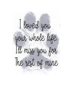 I Love Dogs, Puppy Love, Love You, Big Dogs, Pet Loss Grief, Pet Remembrance, Animal Quotes, Puppy Quotes, Dog Loss Quotes