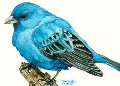 Indigo Bunting Watercolor Art Print of Bird Painting - Saylor Wolf