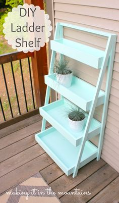 DIY Ladder Shelf | Do It Yourself Home Projects from Ana White - possibly a great storage solution for kids toys, serving stand also