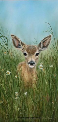 """""""Little One"""" Acrylic on Canvas Deer Painting -Wildlife Art Paintings of North American Wildlife including moose, bear, deer, cougar and sheep. - Wildlife Collection - Paintings by Valerie Rogers Easy Paintings, Animal Paintings, Animal Drawings, Deer Paintings, Quote Paintings, Drawing Animals, Painting Quotes, Horse Drawings, Wildlife Paintings"""