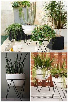 Who doesn't need these in there life   http://www.westelm.com/m/products/iris-planter-chevron-stand-d2955/?pkey=coutdoor-garden-on-sale%7C%7C&cm_src=outdoor-garden-on-sale%7C%7CNoFacet-_-NoFacet-_--_-