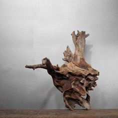 Natural Burl Wood Formation now featured on Fab.