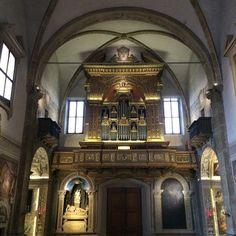 L'organo cinquecentesco della Chiesa di San Michele in Bosco.