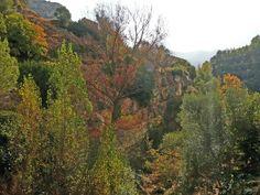 Paisatge de la tardor a Vallibona, poblet de Els Ports a Castelló, Spain