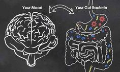 Ever wonder - what is the vagus nerve? As it turns out, a well-toned vagus nerve supports gut health and mental wellbeing. It's what unites the gut and brain. This explains why gut disorders are often connected to depression, anxiety, and more. Gut Brain, Brain Health, Gut Health, Mental Health, Brain Food, Health Care, Thyroid Health, Bone Health, Health Education