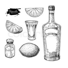 Tequila bottle, salt shaker and shot glass with lime. Mexican alcohol drink vector drawing