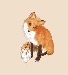 Fox Art Print love this cute little guy. ;)