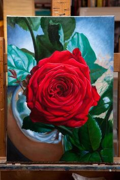 Untitled Red Rose This painting is still drying and will likely be ready for varnishing by mid October. However, if you are interested it is available to purchase now, or hold with a deposit.If you have any questions or would like to arrange a view please drop me an emailto vincentkeeling@gmail.com  Original oil painting of a redrose,by Vincent Keeling  40x55cm Oiloncanvas  Price Unframed - 1150 Euro Framed - 1250 Euro   Viewing also available by appointment in Dublin city…