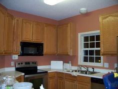 Terracotta kitchen... Our cabinets are about that color