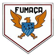 Escudo no formato francês com uma águia na posição central, simbolizando a coragem, o domínio e o arrojo dos pilotos de demonstração aérea. Sobrepostos, figuram a sigla da FAB e quatro aviões em formação diamante