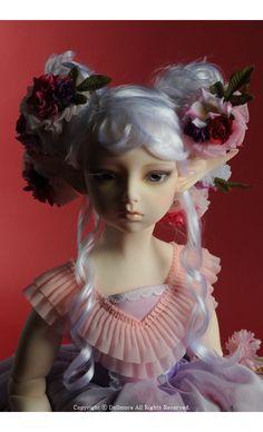 DOLLMORE BJD Lusion Doll - Somnambulinsomnia ; Elf Dahlia - LE30 (Fullset)