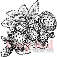 Strawberries - Cling Rubber Stamp