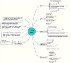 Postpartum Hemorrhage Concept Map.11 Best Pain Images Chronic Pain Fibromyalgia Pain Assessment