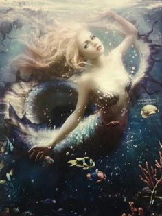 """☯""""...to slip beneath the surface and soar along the silent bottom of the sea agile and shining in water honeycombed with light"""" ☯."""