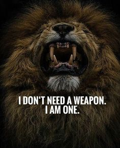 67 Top Quotes Inspirational for Success That will Inspire You Extremely 1 Leo Quotes, Wolf Quotes, Attitude Quotes, Wisdom Quotes, True Quotes, Qoutes, Quotes For Status, Lioness Quotes, Short Success Quotes