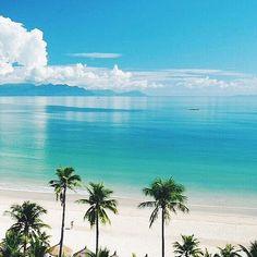 Tropical Beaches With Palm Trees Romantic Beach Photos, Beach Images, Beach Pictures, Romantic Honeymoon, Jamaica Vacation, Hawaii Honeymoon, Vacation Trips, Beach Vacations, Honeymoon Ideas