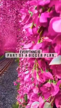 Think Positive Quotes, Hope Quotes, Lyric Quotes, Positive Discipline, Positive Mindset, True Love, Life Hacks, Positivity, How To Plan