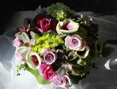 gorgeous rich purples and greens