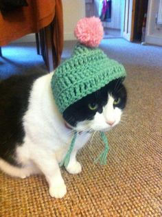 Cute cat hot for the cold days #catclothes #catfashion #cathat